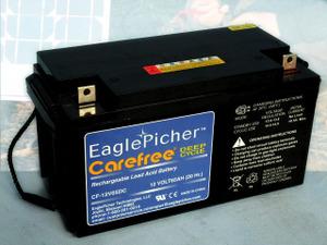 Eaglepichercf12v65dc2
