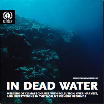 Indeadwater_unepcover