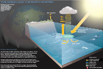State_of_the_oceanco2ecosystem