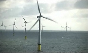 Horns_rev_ii_wind_farm