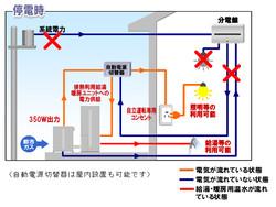 Osakagasenefarm2012b