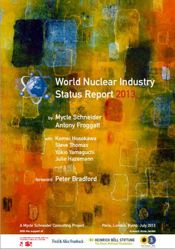 Wnsr2013_nuclear_report_cover