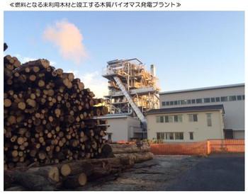 Gifu_biomass_0
