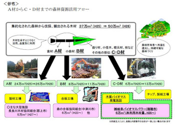 Gifu_biomass_1