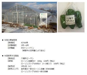 Iwate_hatimantai_peman